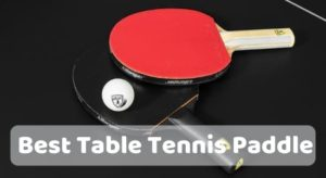 The 10 Best Table Tennis Paddle Reviews 2021 & Buyer's Guide