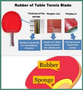 ping pong paddle review